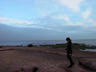 Exmouth, Cornwall...